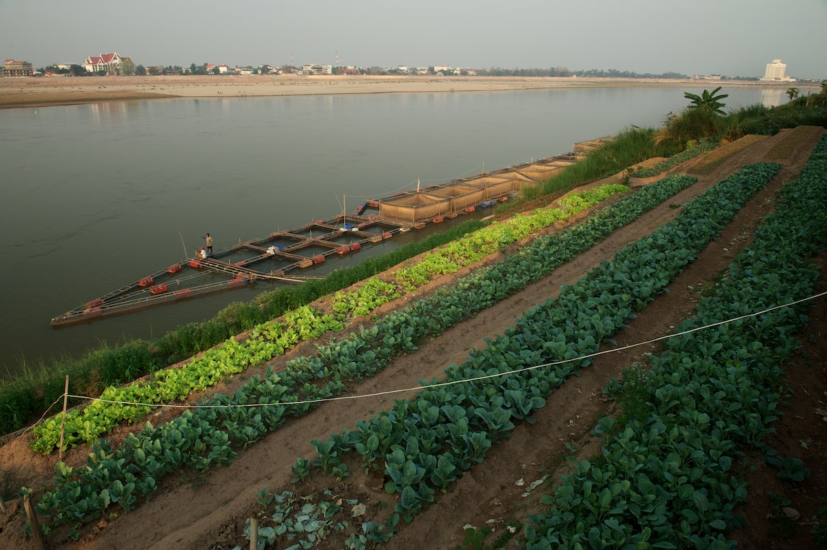Tiered agriculture and floating aquaculture farms make up a common scene along the banks of the Mekong River. During the low flow and dry season many farmers and small villages rely on the seasonally exposed nutrient rich river banks for farming. Across the river, The Mekong River Commission offices are located in Vientiane, Laos.