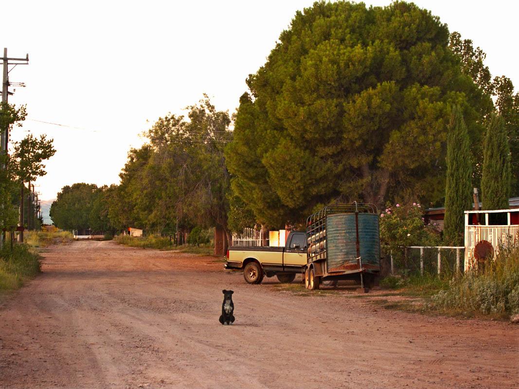 Streets of Mata Ortiz