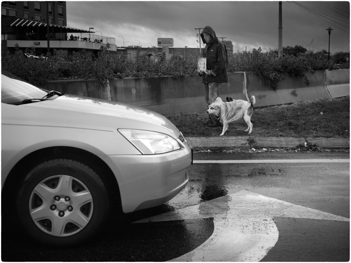 Rain-Dog-MW