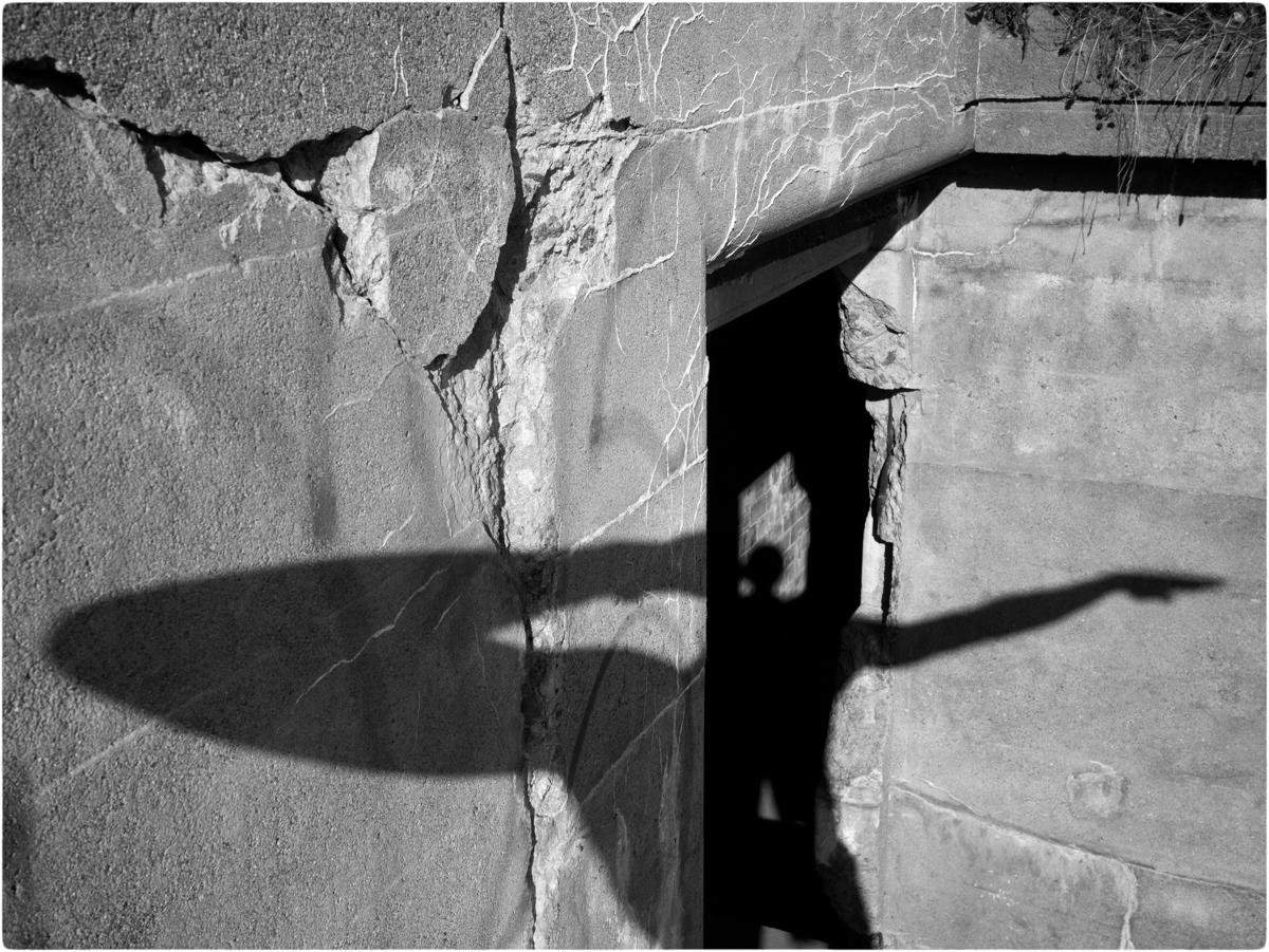 Self-Shadow-MW