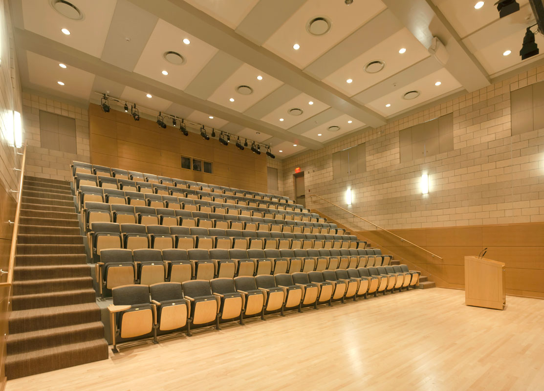 The multipurpose hall with raked seating has ideal sight lines for lectures, recitals, and dramatic performances