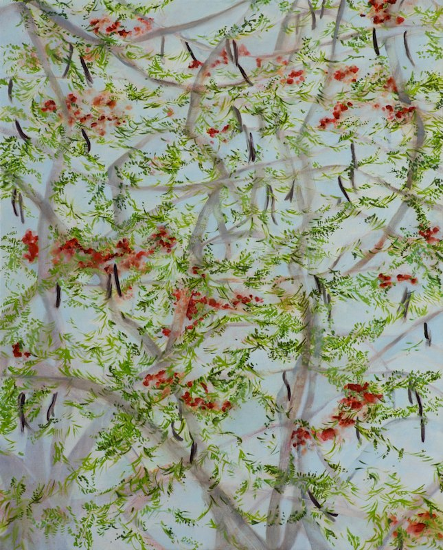 FLAME TREEoil and acrylic on canvas over board52 x 42 cm., 2011
