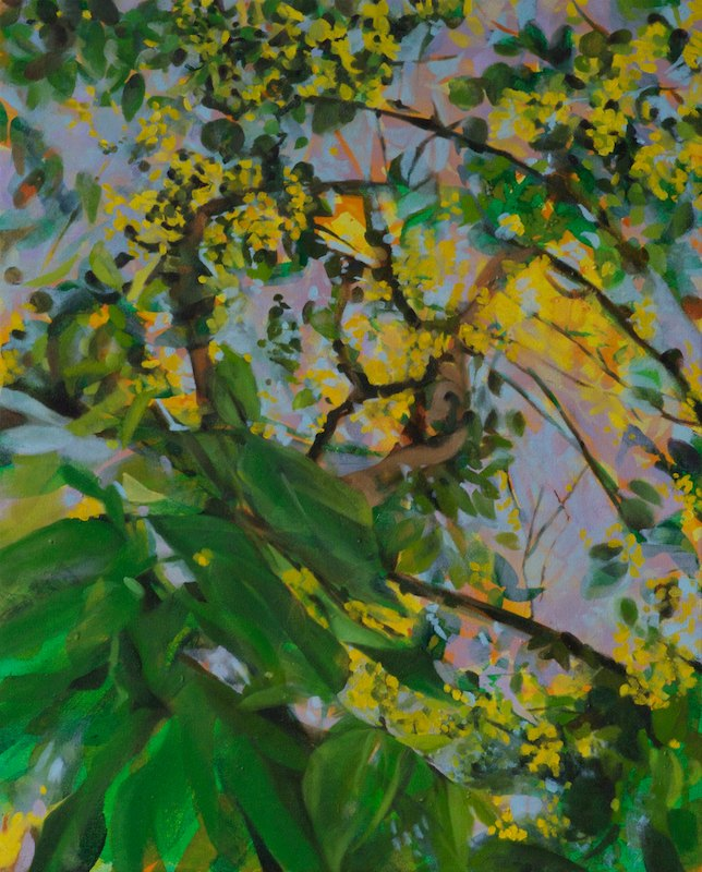 GOLDEN SHOWER TREEoil and acrylic on canvas over board52 x 42 cm., 2011