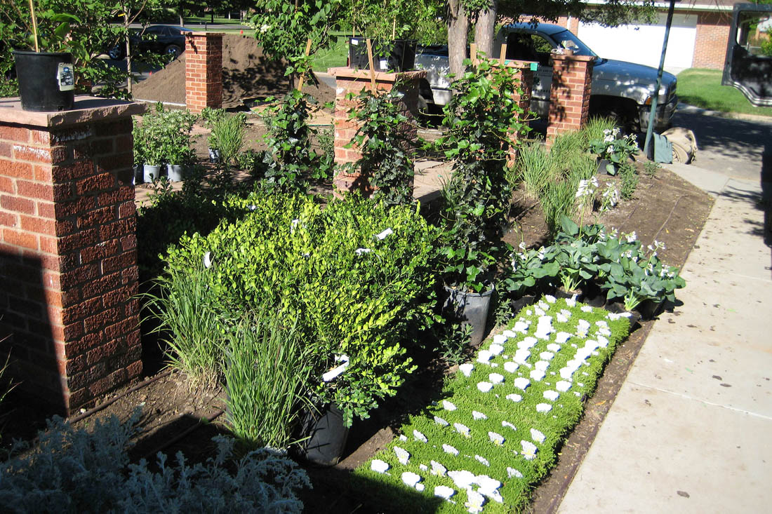 Plants are chosen and inspected either at a local nursery or on site to ensure they meet the standards of the landscape architect.
