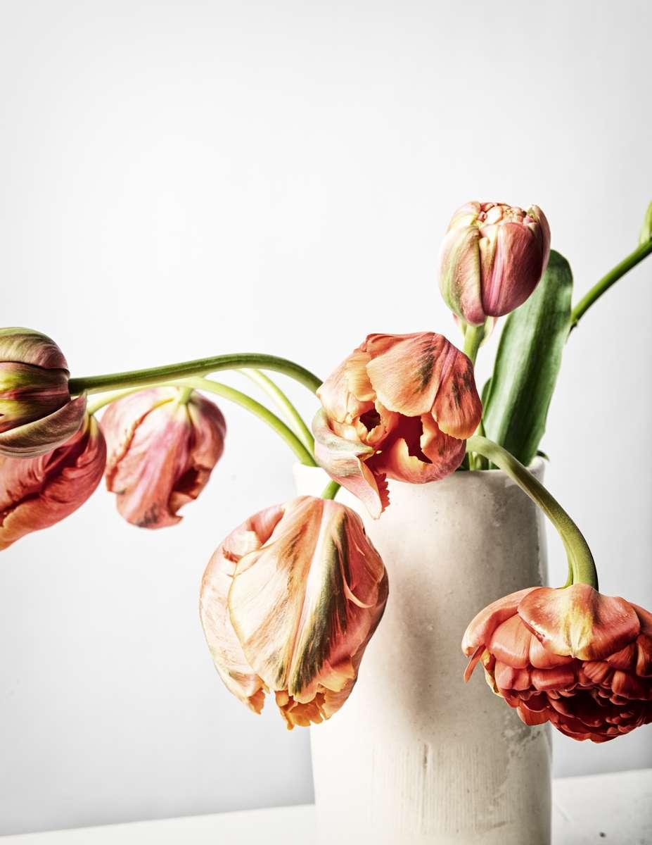 FLOWERS-2021112967-Edit