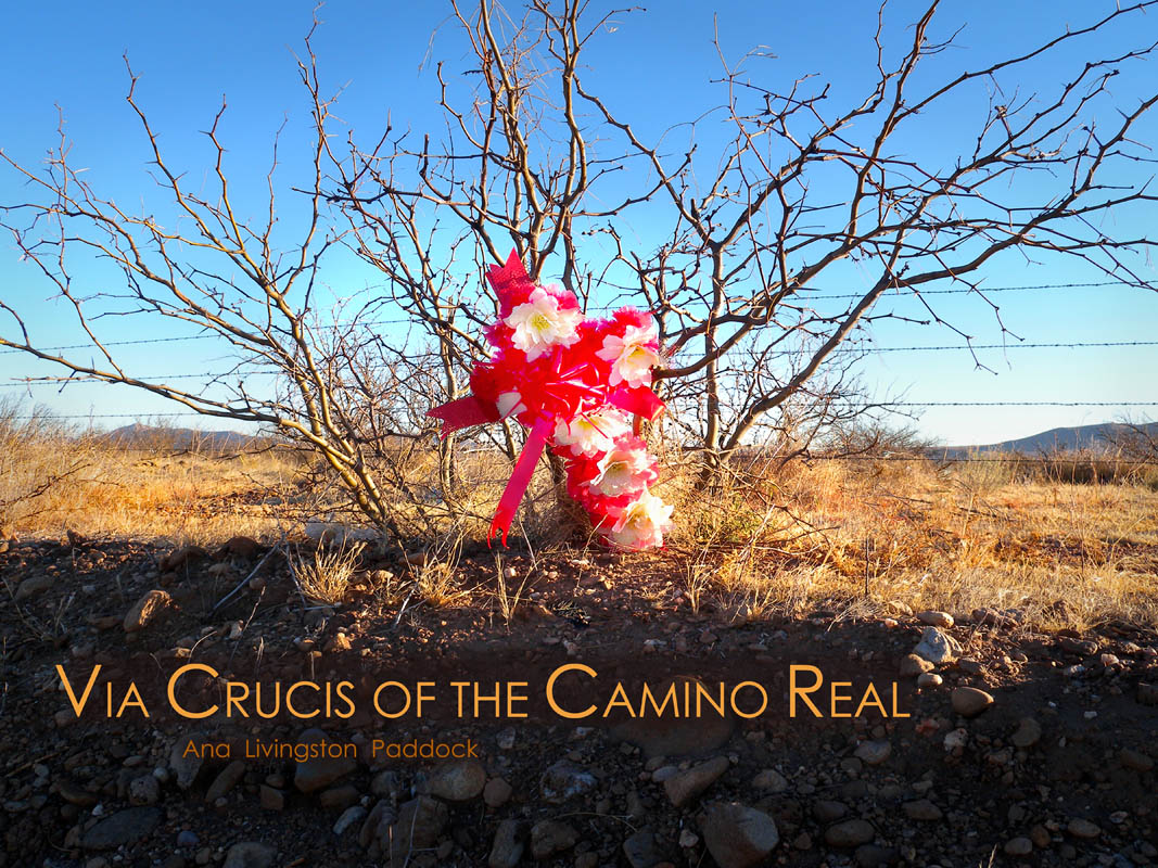 VIA CRUCIS OF THE CAMINO REALBy Ana Livingston PaddockThis book has been issued in conjunction with the exhibition of these photographs at the ISEA Albuquerque 2012: Machine Wilderness symposium in New Mexico, Fall 2012.   BUY BOOK