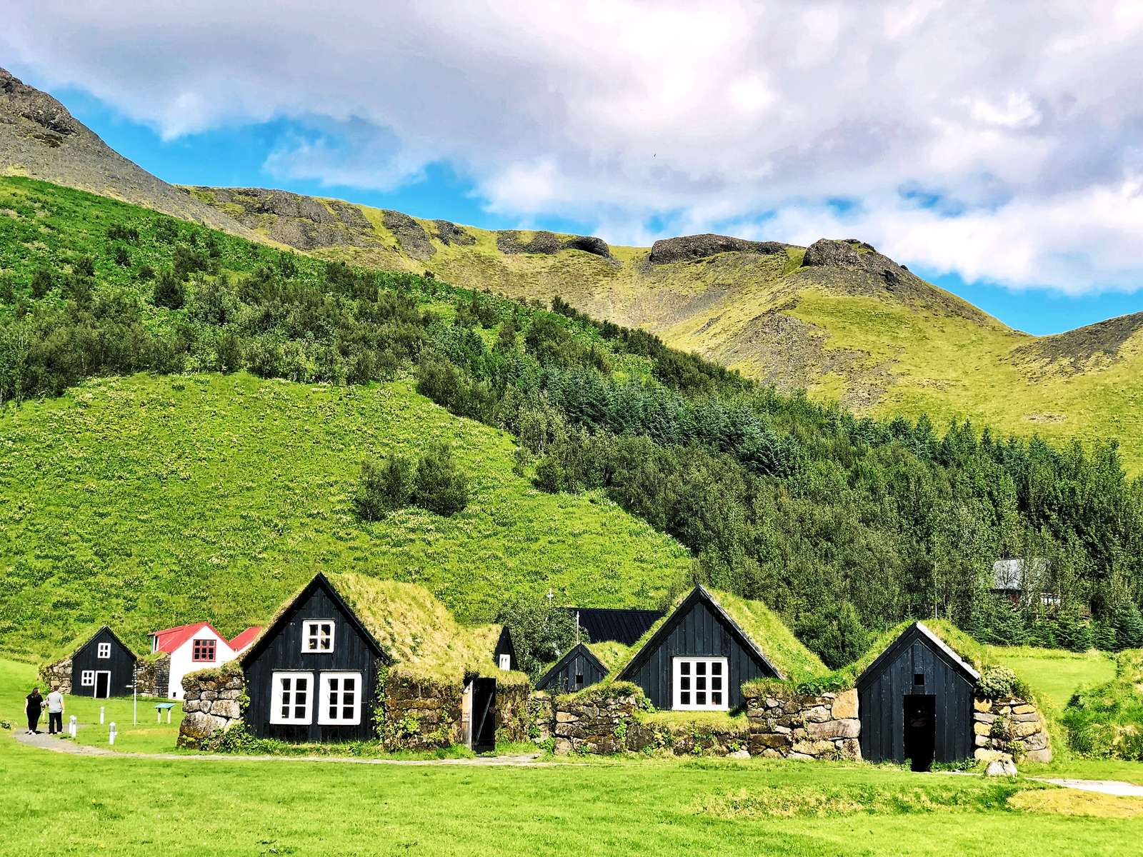Sod farmhouses Skogar