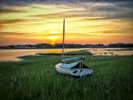 A photo of a single-masted catboat taken during sunset in Cape Cod MA. The boat is sitting high and dry in the green marches at high tide.
