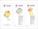 Catalog of New, Croooz Products:  A look at the apparel brochure for Croooz® in design development.