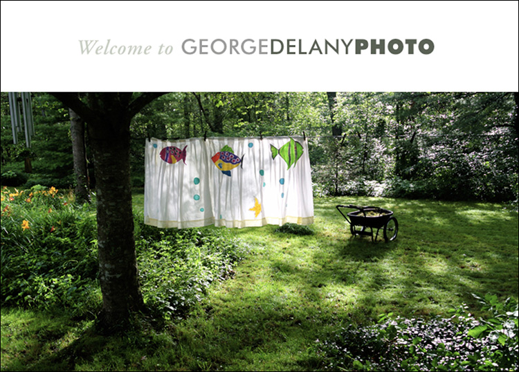 He Travels, He Shoots: George Delany takes photographs.
