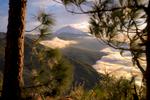 Grid_Landscapes-Nature
