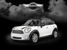 Mini-Cooper-Country-2