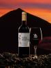 Viña Norte red wine, Bodegas Insulares Tenerife