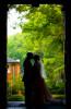 weddings_171