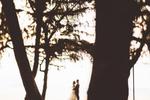 Southeast-Asia-Destination-Wedding-Portraits-35