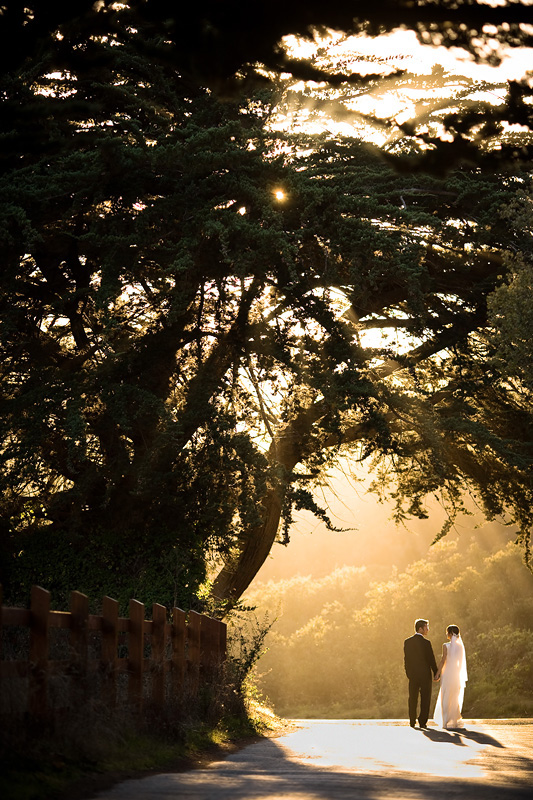 San_Francisco_Wedding_Photographer-018