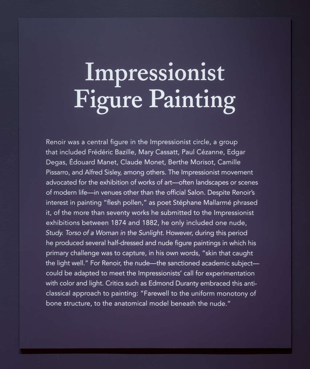 Renoir-The-Body-and-the-Senses-21
