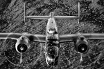 B-25 Mitchell - {quote}Maid in the Shade{quote},Image no: 12-003906.bw   NOT FOR SALE - CAF Arizona Wing have copyright to B-25 {quote}Maid in the Shade{quote}