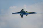 Blue-Angels-F-A-18-Hornet-Boeing-12-017950-vv