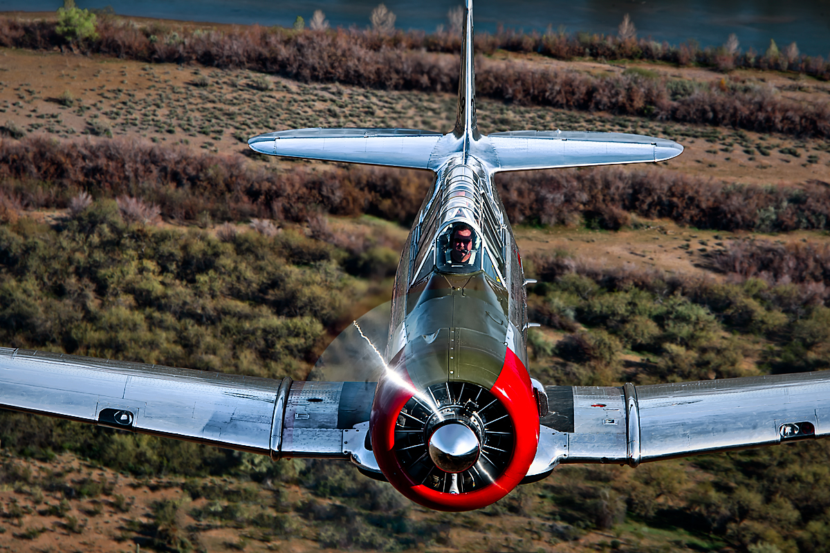 T-6 Texan,Image no: 12-003473