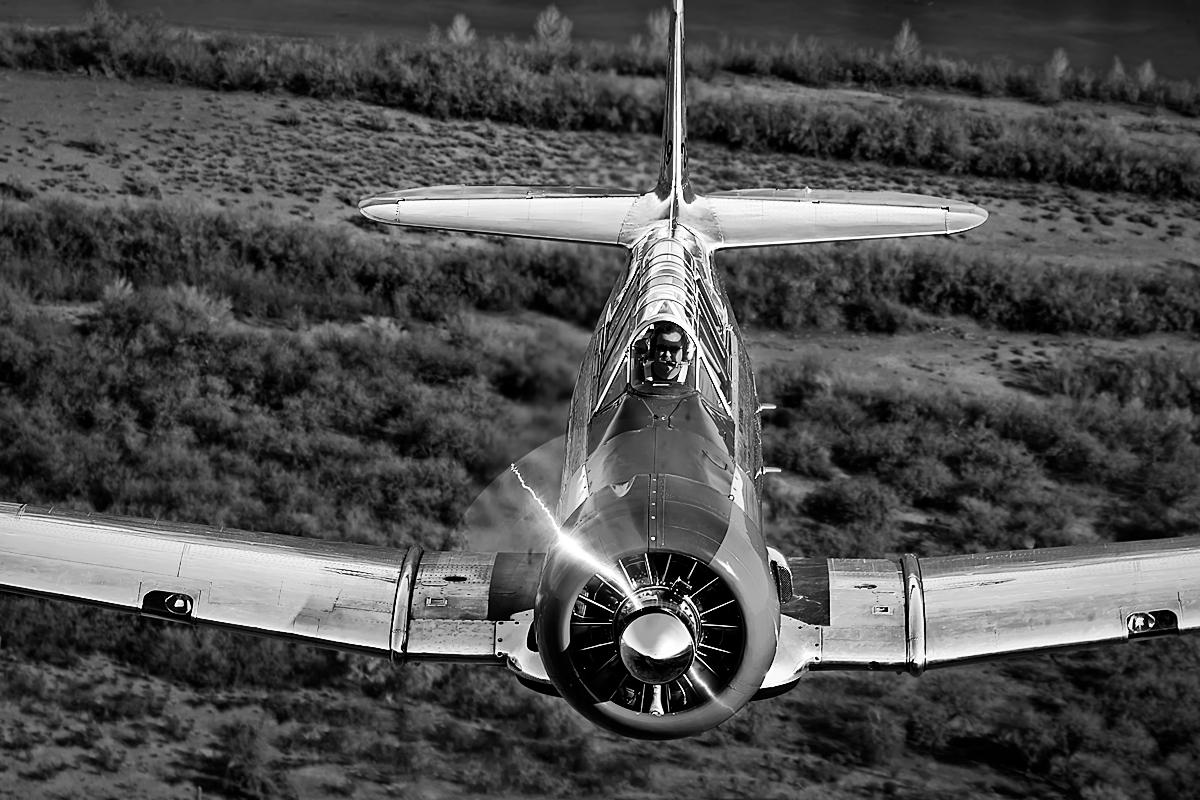 T-6 Texan,Image no: 12-003473.bw
