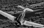 T-6 Texan,Image no: 12-003490.bw