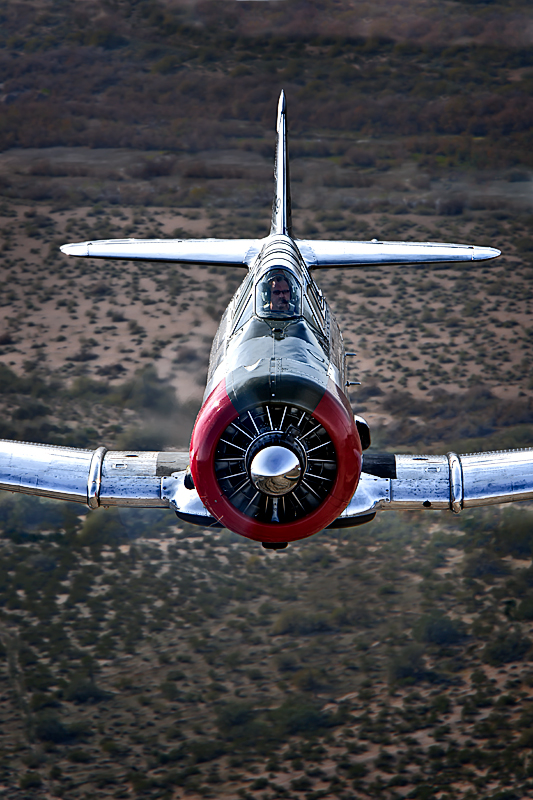 T-6 Texan,Image no: 12-003520