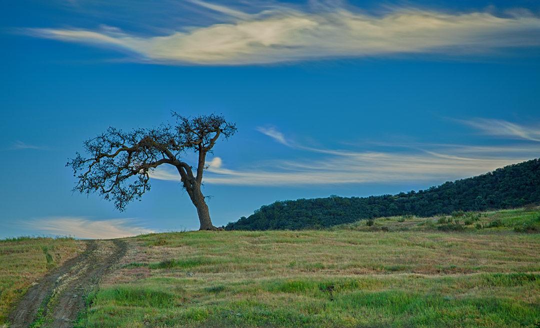 Agoura Hills, California