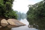 Near Kiribi - Cameroon