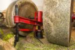 20121108_Caponetti_0905-Edit