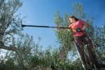 20121109_Caponetti_039-Edit