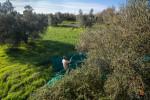 20121117_Caponetti_276-Edit