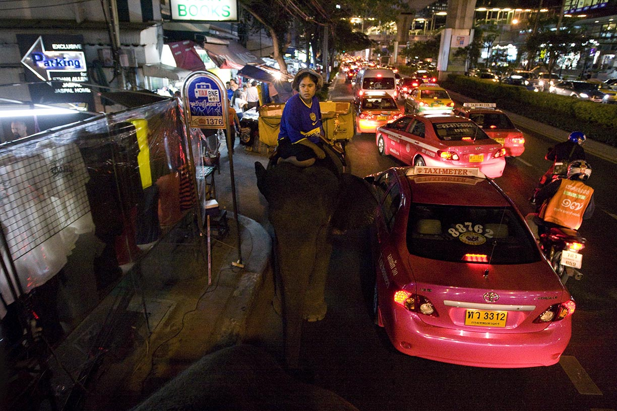 Ooau leads elephant Boopae through a traffic jam on Sukhumvit road in Bangkok.