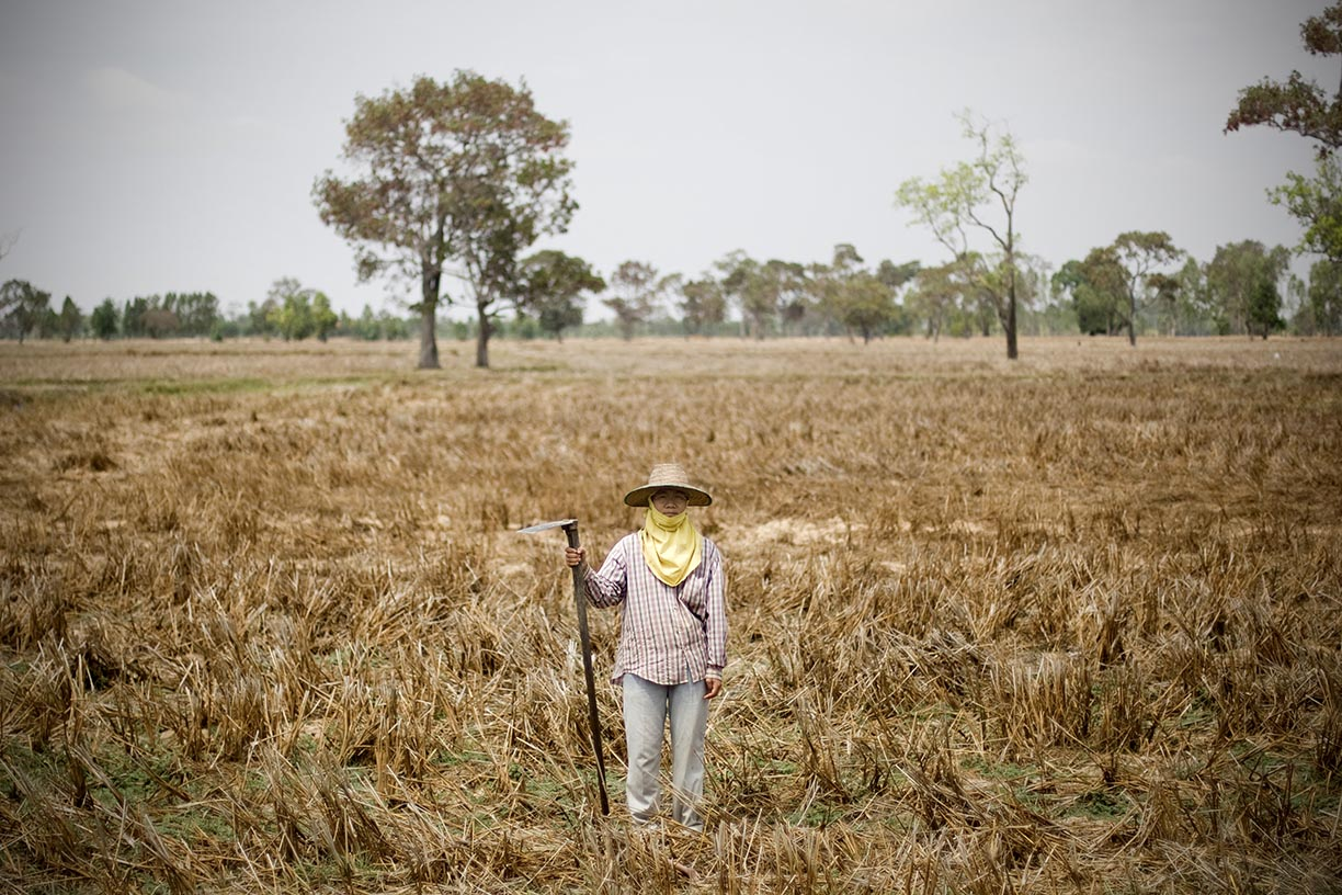 Wan's sister Aor stands at their family farm in Surin province. Outside of a short rice-farming season Surin remains a dry and hot environment most of the year leaving rice-farmers with little to no income. As a result members of most farming families end up in urban centres like Bangkok seaching for employment.