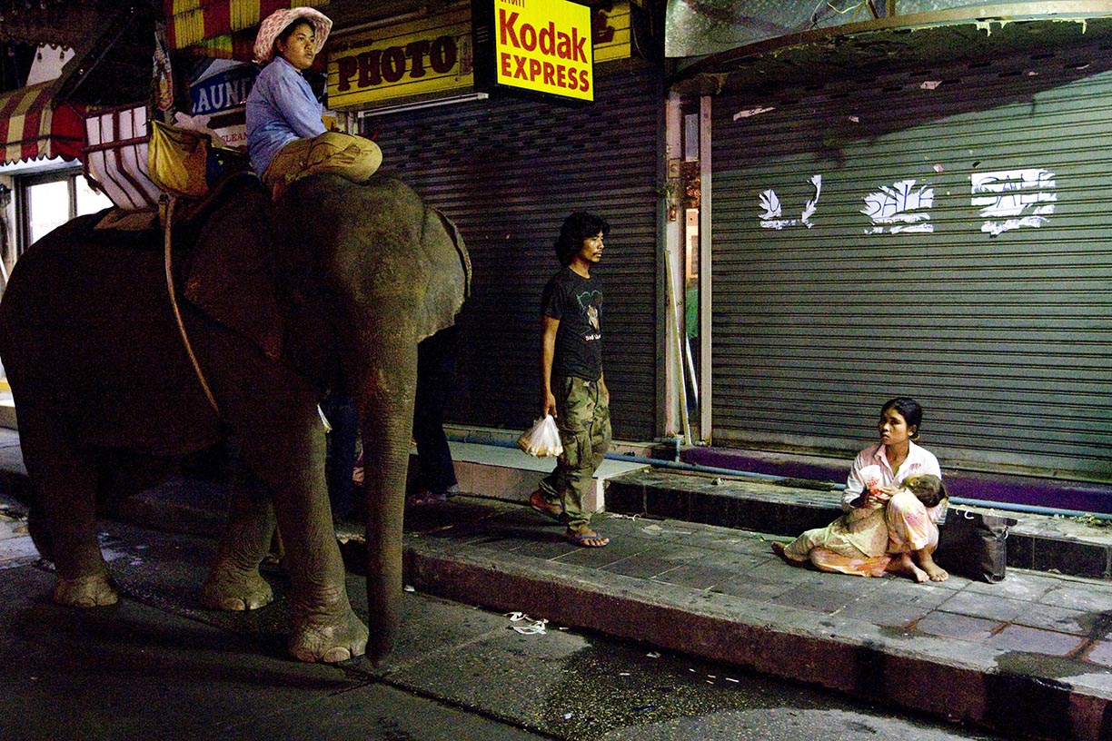 Mahouts Ooau, left, and Wan pass a homeless woman and child in the tourist area of Sukhumvit in Bangkok.
