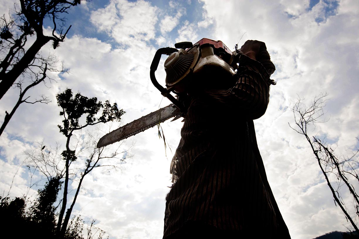 A mahout stands with a chain-saw in an area near Hongsa in Lao PDR.