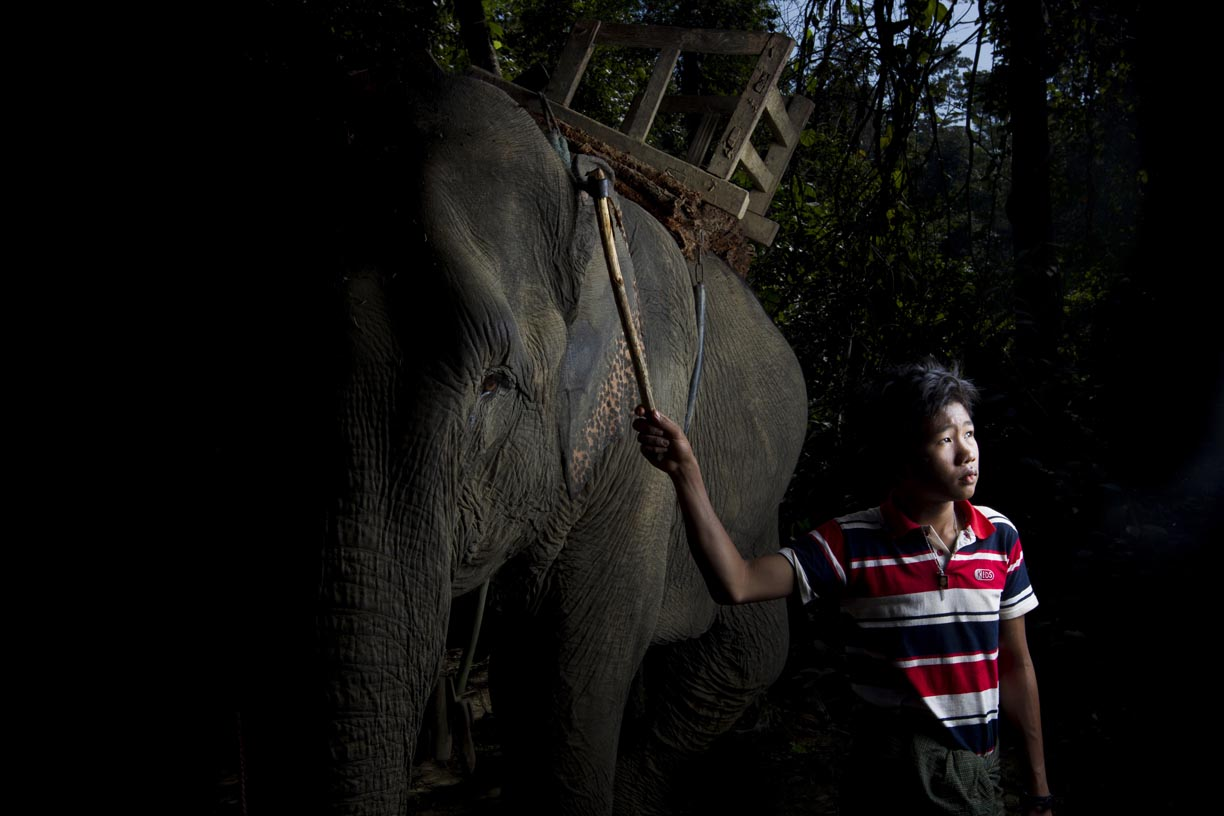 An oozie, or mahout, poses with his elephant in the Yoma mountain range.