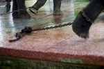 Captive elephants pull on chains at the Yangon zoo.