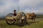 Farmer, Putao, Myanmar.