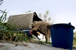 An elephant climbs into a truck at an abandoned housing development in Bang Bua Thong, Thailand.
