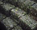 Polyethylene Terephthalate (PET), Peel Region Material Recovery Facility, Brampton.