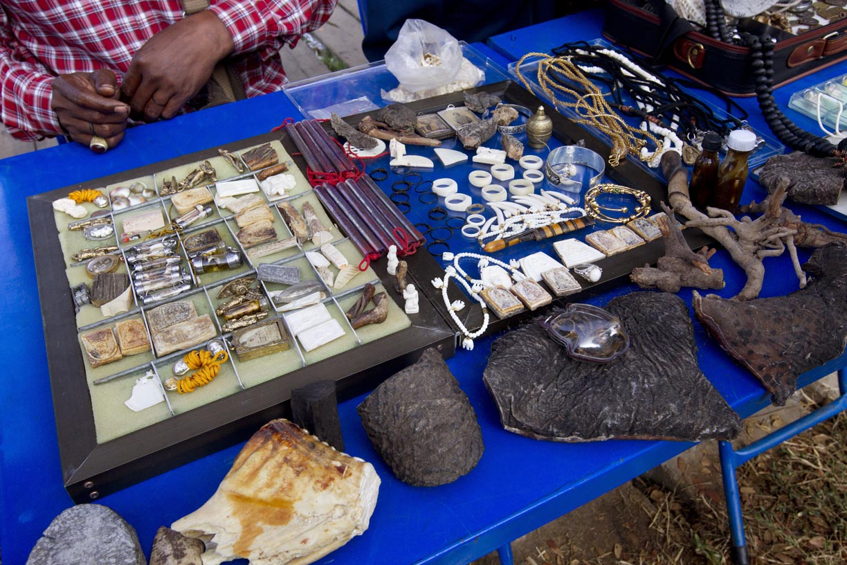 Illegal ivory and elephant body parts are openly sold during the Surin Elephant Roundup.