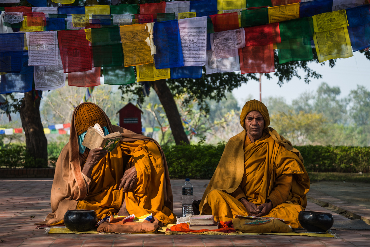 Many thousands make the pilgramage to the birthplace of Bhudda in Nepal every year.  These monks sit in the sacred garden there, in study and reflection.