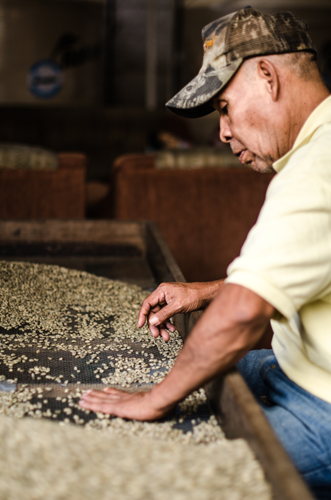 A coffee grower helps his buyer sort the beans.