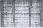 Graphite on Paper9 X 14 in.