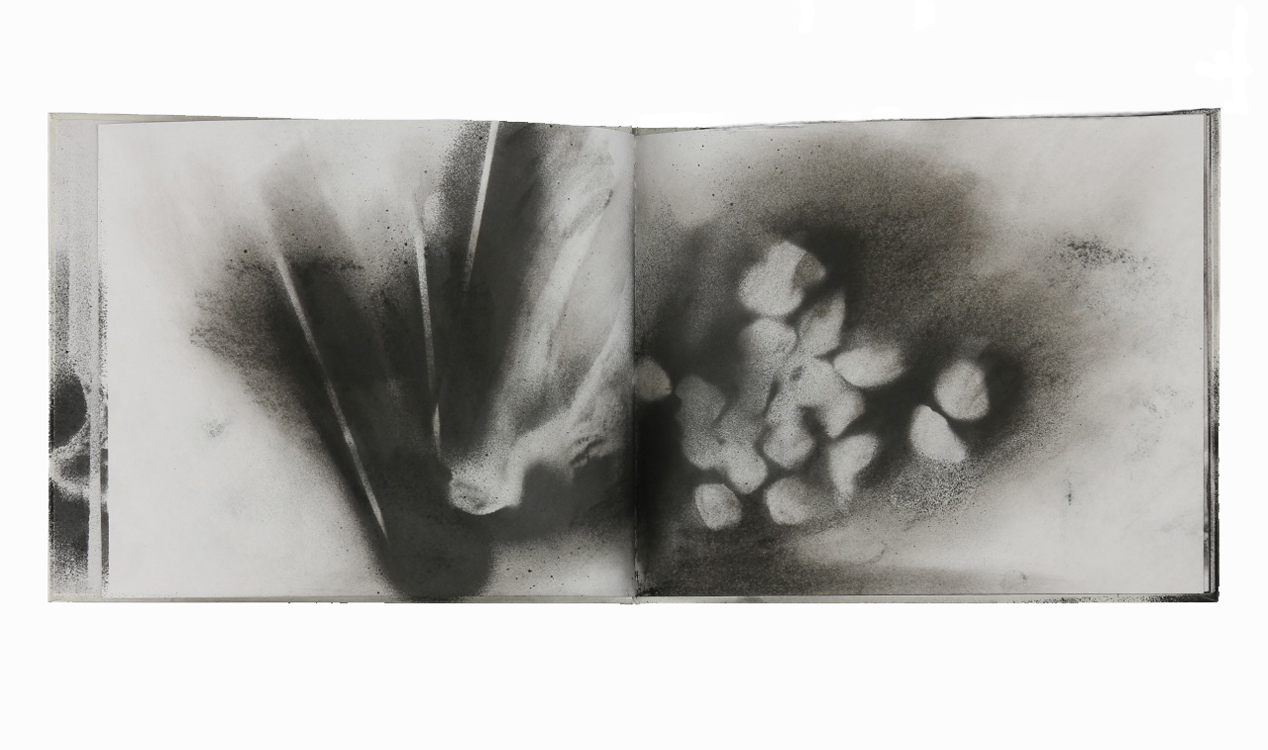 Charcoal on paper (hardbound book)8 x 20 in.