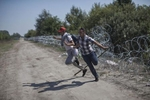 Syrian refugees jump over barbed wire on Hungary's border with Serbia, Roszke, Hungary, August 30, 2015.
