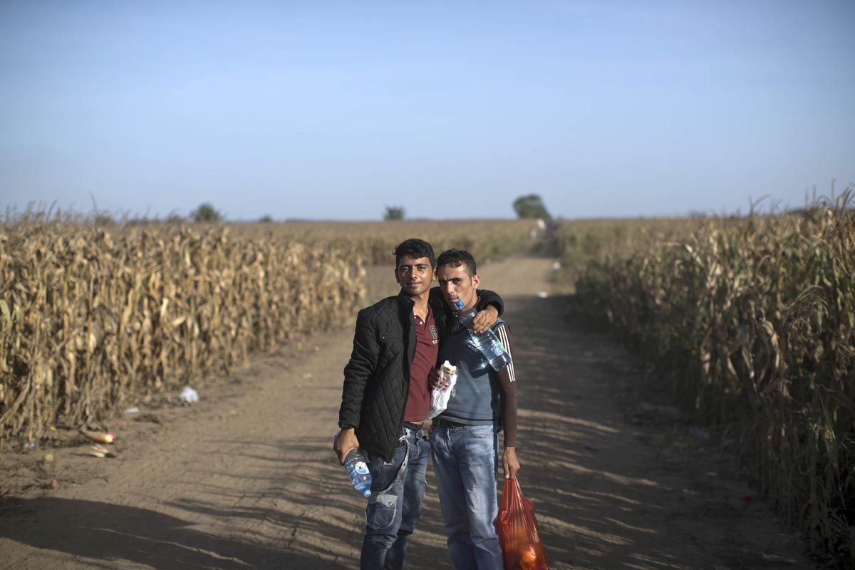 two friends hug each other while walking through a corn field in order to get to the serbian-croatian border, sid, serbia, sept. 18, 2015.