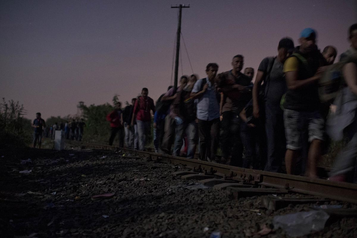 a large group of refugees crosses the serbian-hungarian border at night, roszke, hungary, august 29, 2015.