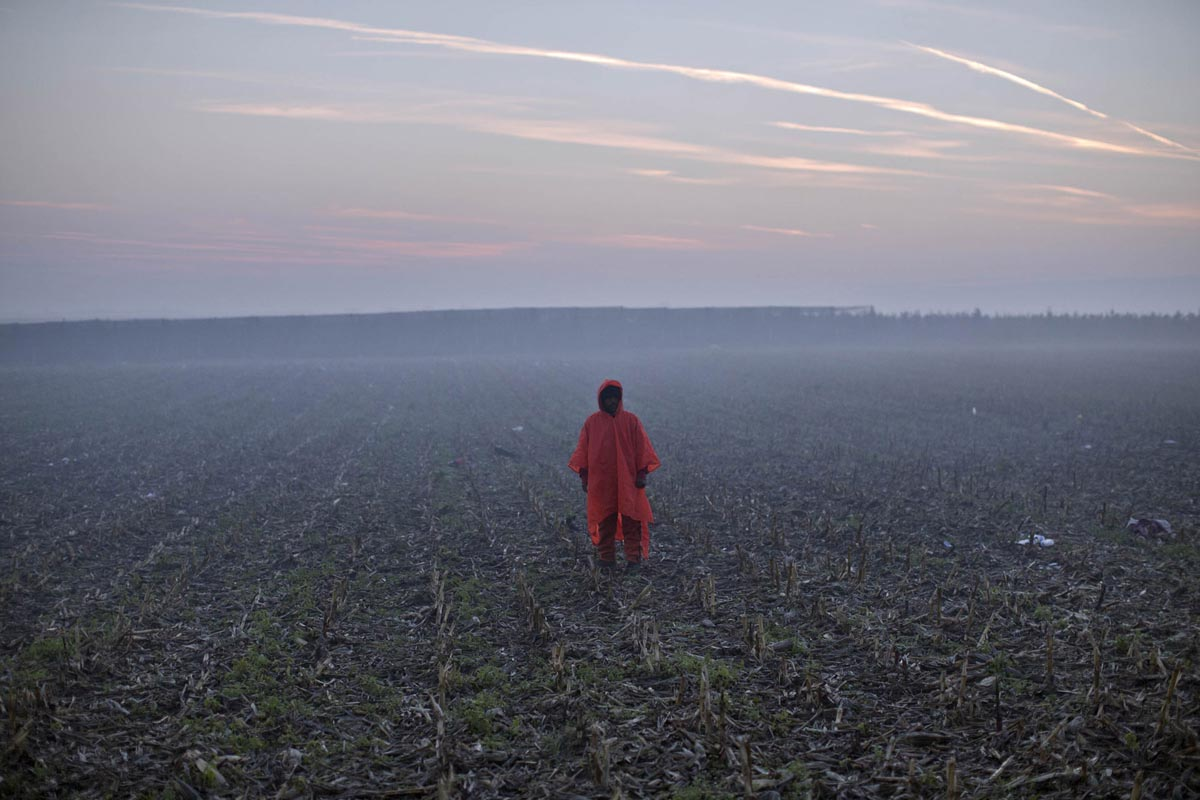 A refugee stands in a field at dawn, Berkasovo, Serbia, Oct. 23, 2015.
